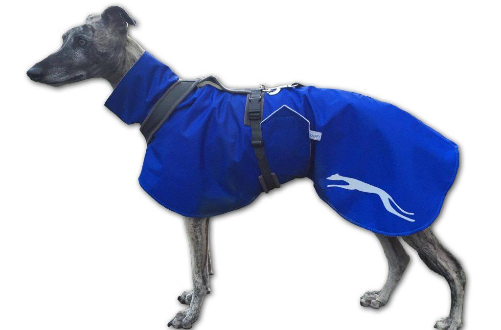 Wintermantel Windhund